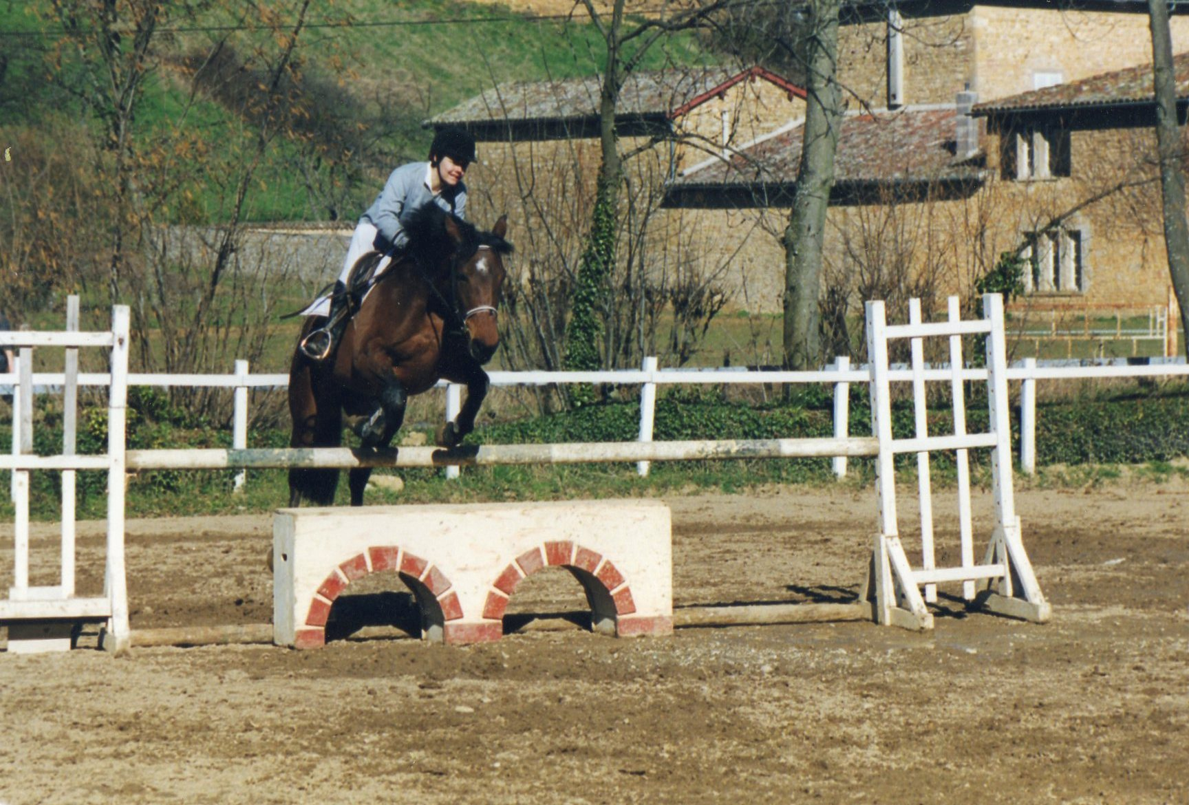 obstacles de cross cheval